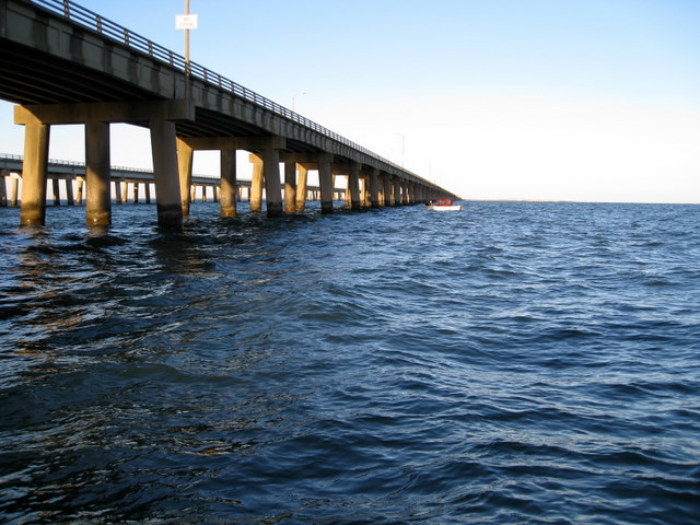 virginia fishing report cbbt chesapeake bay bridge