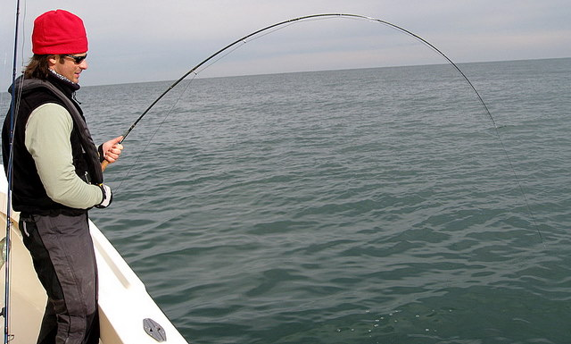 Virginia fishing report cbbt chesapeake bay bridge for Chesapeake fishing report