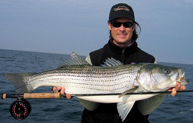 Virginia fishing report cbbt chesapeake bay bridge for Striped bass fishing reports